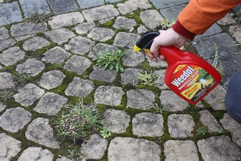 Best Killer For Patios by Patios And Paving Gardening