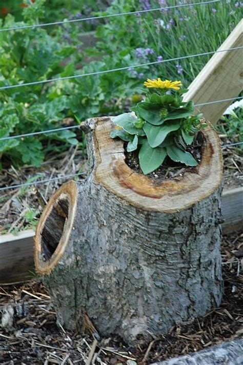 Tree Log Flower Planter by 63 Best Tree Stump Ideas Images On Fairies
