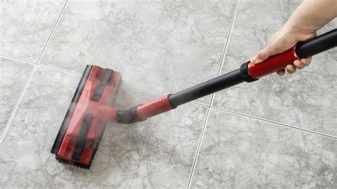 best steam the 5 best home steam cleaners of 2017 bring the power of