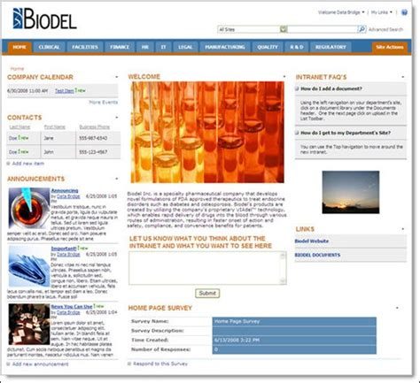company intranet template intranet exles