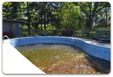 tri cities tennessee swimming pool makeovers landscaping brooks malone outdoor living