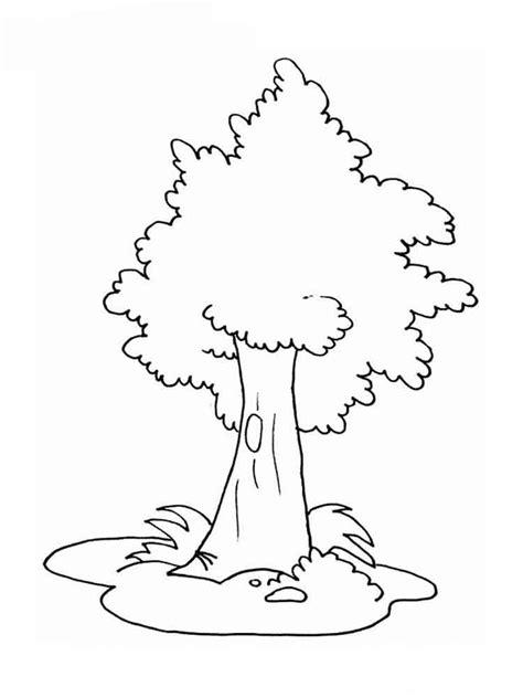baobab tree coloring page baobab tree coloring page sketch coloring page