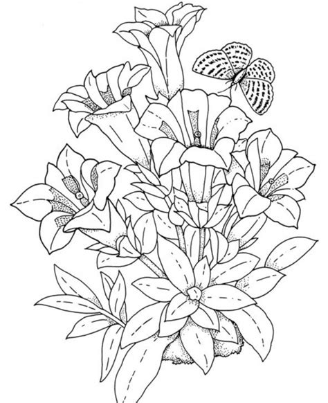 detailed coloring pages for adults flowers flower coloring pages for adults bestofcoloring com