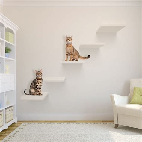 try these 8 cool ideas to build wall shelves for cats