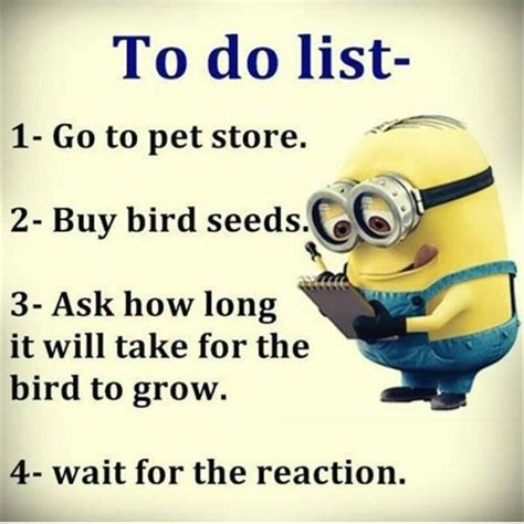 Or Jokes Clean Humour Jokes Hilarious Hilarious Humor And Minion