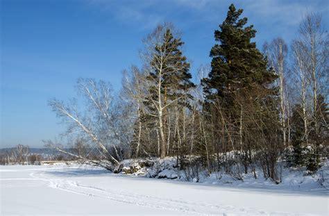 for winter siberia winter pentaxforums