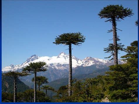 imagenes naturales de chile paisajes naturales de chile