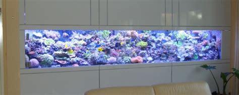 fabricant achat vente d aquarium sur mesure center aquarium