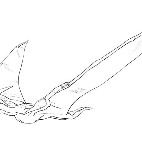 pteranodon coloring page for kids dinosaurs pictures and
