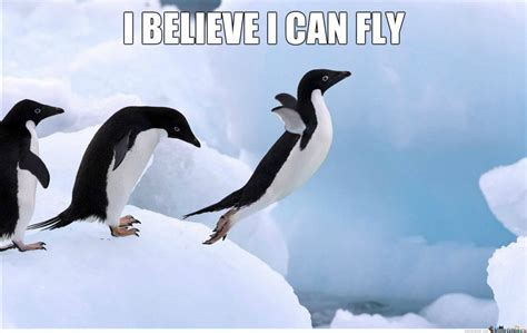 Penguin Meme - 16 penguin memes that are too adorbs for words