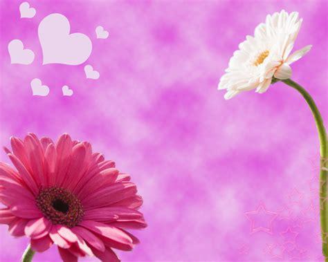 imagenes de un flores paisaje sepia petalos de luna s weblog