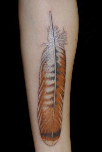 hawk feather tattoo designs hawk feather cool especially since