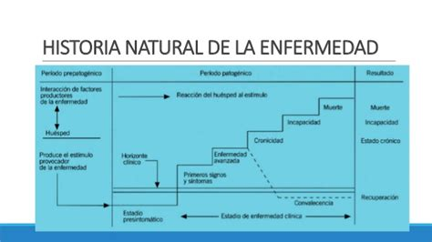 historia natural de la enfermedad cadena epidemiol 243 gica - Cadena Epidemiologica Historia Natural Dela Enfermedad