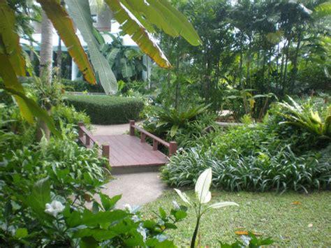 tropical planting scheme tropical planting schemes some ideas thai garden design