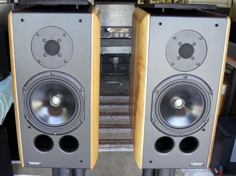 best large bookshelf speakers 28 images paradigm