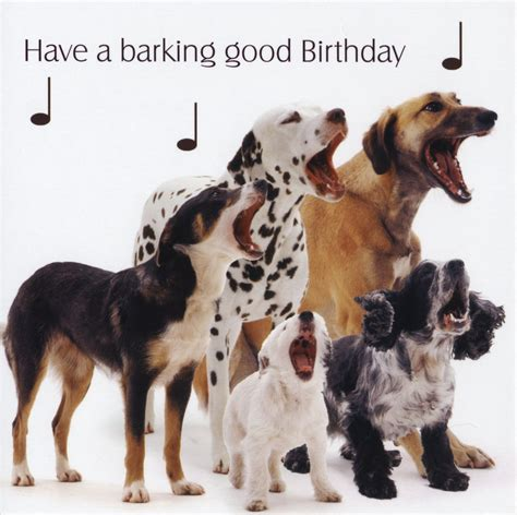 Happy Birthday Wishes Dogs Happy Birthday Quotes For Dogs Quotesgram