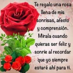 frases rosas 23 im 225 genes de rosas rojas con frases de amor romanticas