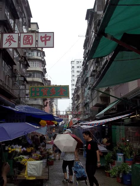travel guide  hong kong kenton de jong travel