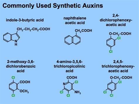 Hormon Auxin auxins