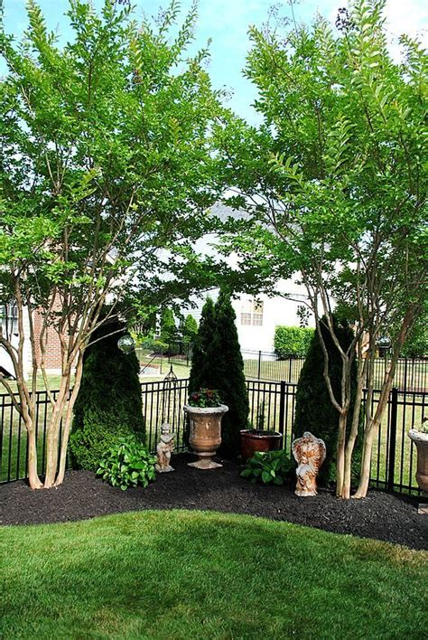 Backyard Corner by Best 25 Corner Landscaping Ideas On Corner
