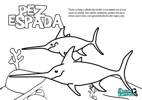 imagenes educativas para imprimir y colorear el pez espada dibujos para colorear de peces educativos