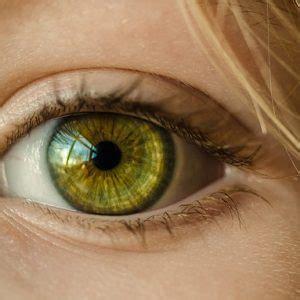 guarire dalle mosche volanti sintomi e cura orzaiolo e calzaio all occhio ascesso e