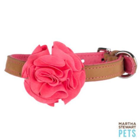martha stewart collar best petsmart martha stewart collar products on wanelo