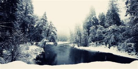 gif wallpaper winter snow national park yosemite yosemite national park
