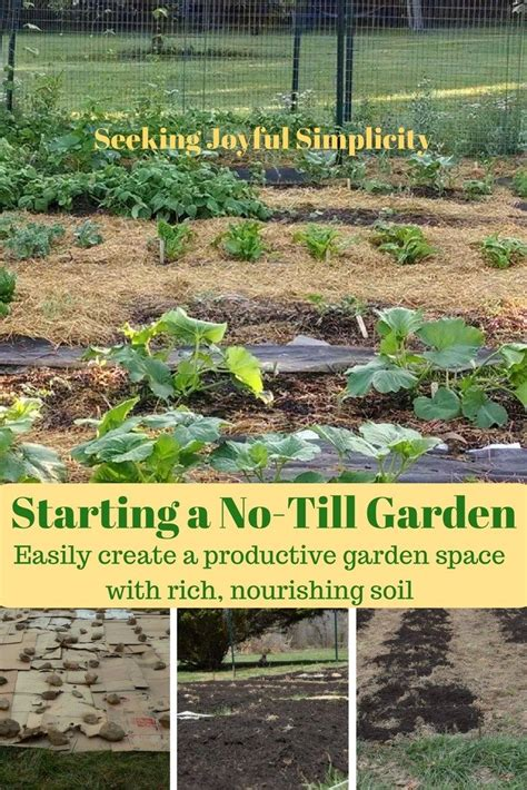1000 images about gardening outdoors on pinterest