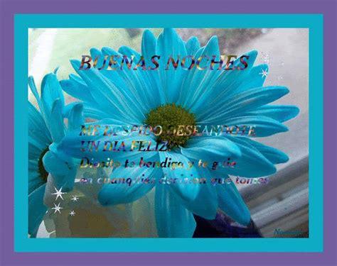 imagenes flores noches buenas flores con buenas noches imagui