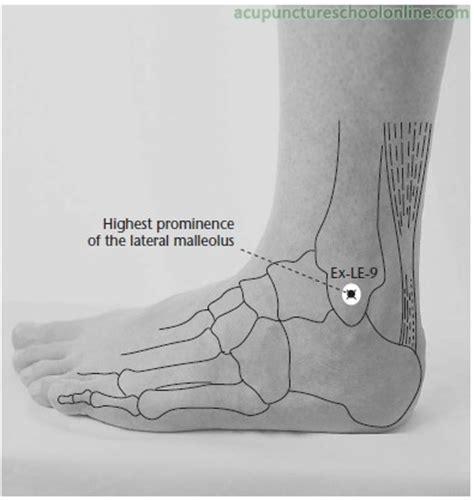 ex le ex le 9 outer malleolus tip waihuaijian acupuncture