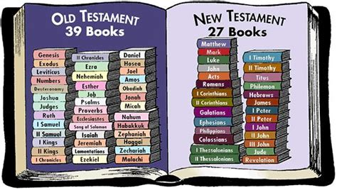 niv the books of the bible new testament hardcover enter the story of jesusâ church and his return books books of the bible in order testament books bible