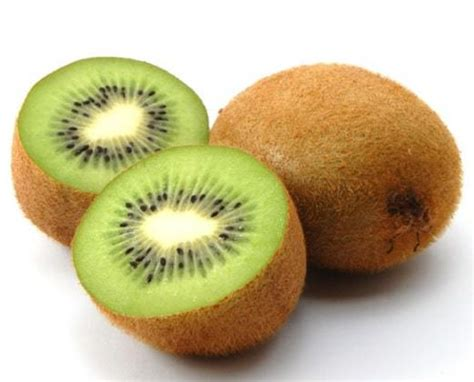 Bibit Buah Kiwi jual tanaman kiwi green 5 cm bibit