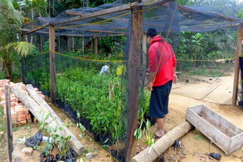 kemenhut lamban berikan izin kelola hutan masyarakat di