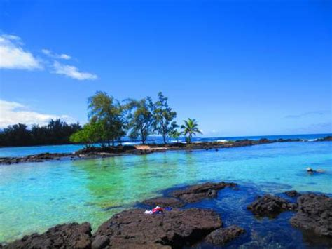 bed and breakfast hilo maureen s bed and breakfast hilo hi united states overview priceline com