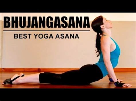 best yoga tutorial on youtube bhujangasana the cobra pose best yoga asana youtube