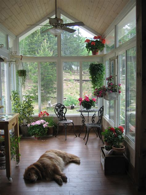 Sun Porch Ideas Interior Design Design Homes Decor Ideas Dogs Sunrooms