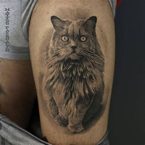 cat tattoo black and grey 73 best images about amazing cat tattoo design ideas on