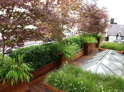 Taking Refuge in the City on a Rooftop Garden Oasis