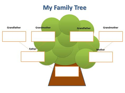 simple family tree template blank family tree for clipart best