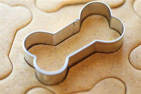 puppy cookies 5 easy treats to make your pup happy
