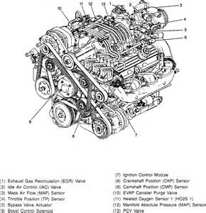 Buick Lesabre Engine Diagram 96 Buick Century 3 1 Engine Diagram Get Free Image About