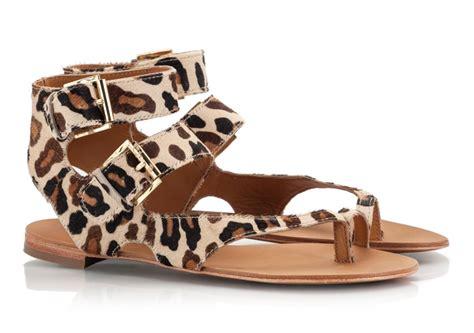 leopard gladiator sandals ash maeva leopard print gladiator style toe ring