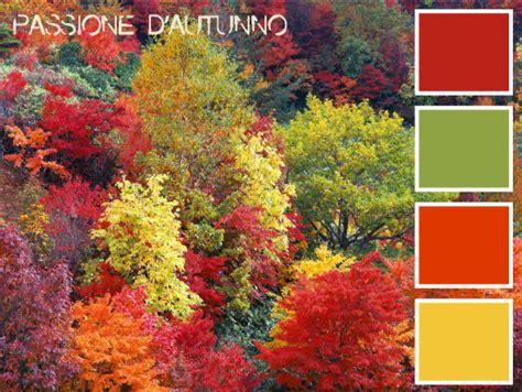 Palette Colori Marrone by I Colori E Le Forme Dell Autunno Per L Arredamento