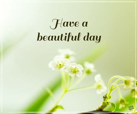 beautiful images for day a beautiful day morning quotes on pictures