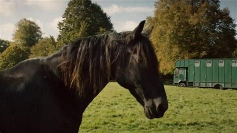amazon prime commercial actress little man amazon prime tv commercial lonely horse song by sonny
