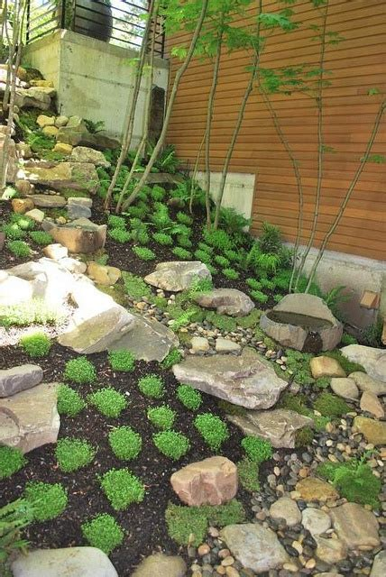 Design Classics Home Garden Inc by 22 Best Images About Backard Landscapers On