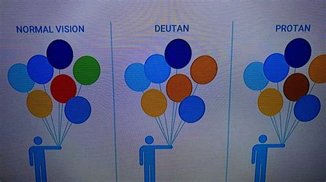 deutan color blindness enchroma shows the difference between normal vision deutan