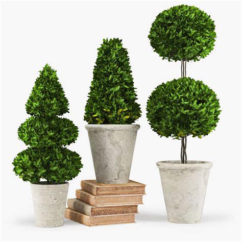 decorative accents max plant decorative accents trees