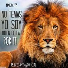 imagenes cristianas leon citas on pinterest dios biblia and frases